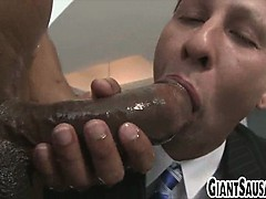 big-black-cock-sucked-by-stud-in-a-suit