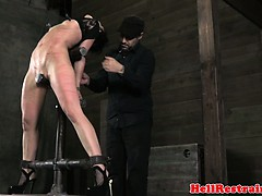 nipple-clamped-ball-gagged-sub-whipped