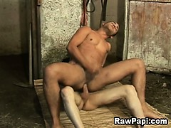 hot-latino-gays-bareback-ass-fucking