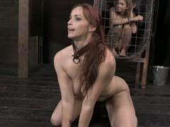 bdsm-bondage-sub-bella-rossi-puppy-play-with-dominators