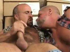 hairy-mature-guys-at-work