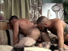 hairy-bear-gets-rimmed