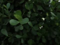 Минет Групповуха Блондинки Брюнетки фото 3