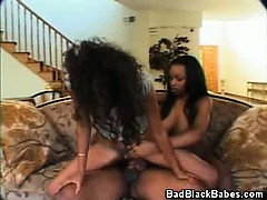 ebony babes threesome