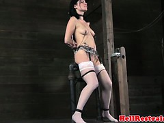Tt Sub Gets Punished With Nipple Suction