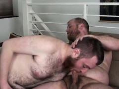 Chubby Redbear Cocksucking After Anal
