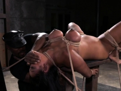 Hogtied Submissive Flogged And Fingerfucked