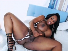 Chubby Ebony Trans Babe Strokes Her Hard Cock