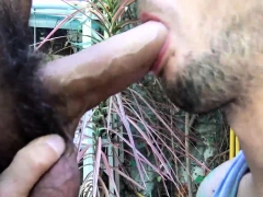 Free Gay Porn Videos Guy Licking Milky Boobs It Is Very