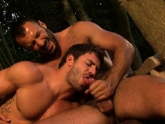 obsession-scene-3-avi-dar-and-wilfried-knight