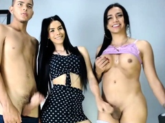 cartoon-group-sex-with-busty-tranny