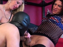 TS shemale trannies group butt fucking