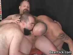 gay-bears-pumping-iron-and-sucking-cock-part2